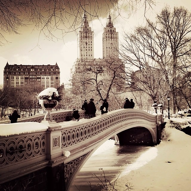 Picture of the Week: Central Park After Snow Fall