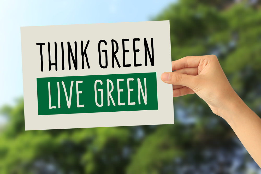 Explore a Healthier Lifestyle at the NYC Green Festival