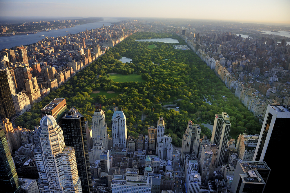 Exploring New Developments in NYC
