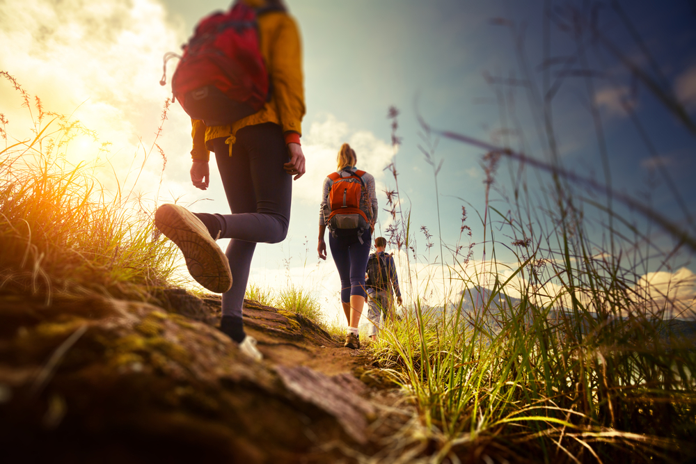 Take a Break from the City with These Great Nearby Hikes